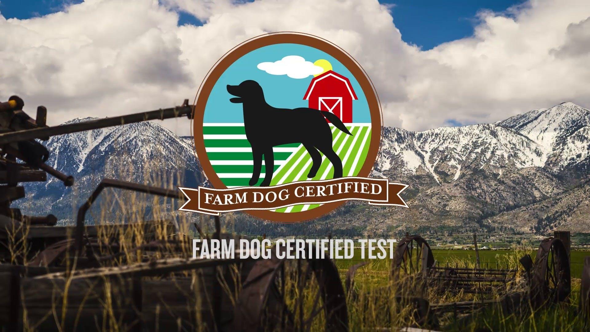 Intro to AKC - Farm Dog Certification Test   AKC.TV