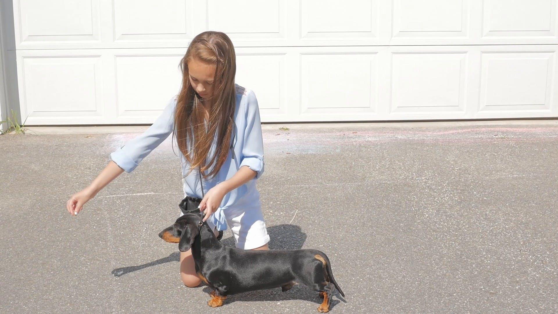 AKC.TV Presents - A Family Sport - Lily Rider | AKC.TV